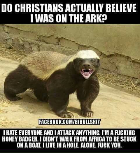 I'm not repinning this to bash believers in the ark. I'm pretty confident that this is what honey badgers think all the time!