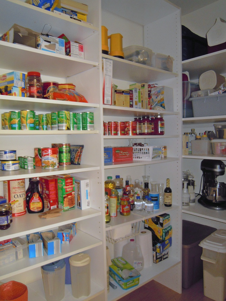organization for small kitchen 141 best images about walk in pantry on 3773