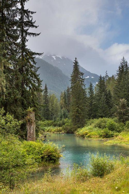 Fish Creek, Tongass National Forest, Alaska