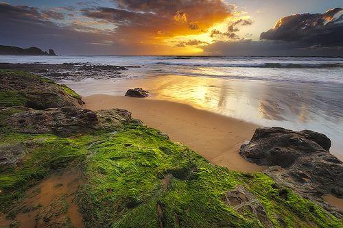 Woolamai Beach - Phillip Island - Australia