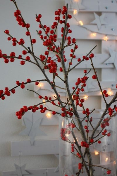 blog | langius design | interieur en tuinen in deventer