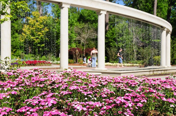 Mercer Arboretum in Houston, Texas
