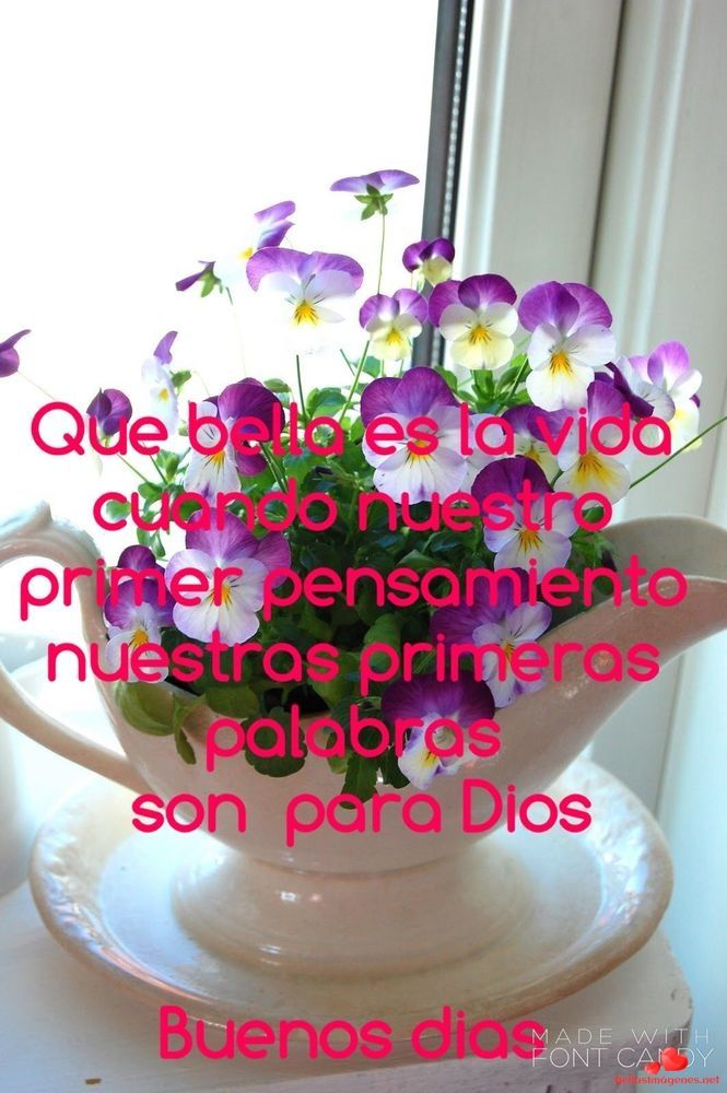 Bellas Imagenes De Buenos Dias Para Enviar A Amigos De Facebook Y