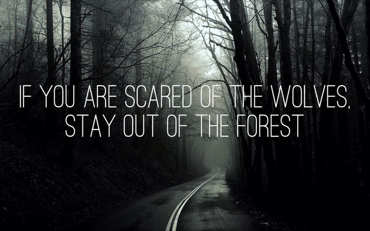 Stay out of the forest