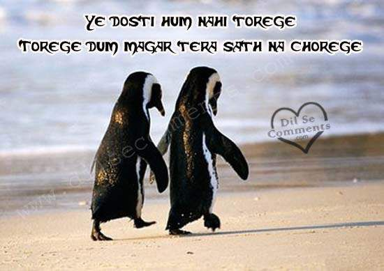 Image from http://www.dilsecomments.com/graphics/Friendship-Shayari-3355.jpg.