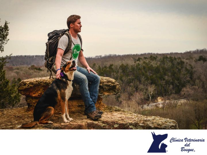 https://flic.kr/p/TKHbzS | Acampar con tu mascota es una experiencia única. CLÍNICA VETERINARIA DEL BOSQUE 3 | Acampar con tu mascota es una experiencia única. CLÍNICA VETERINARIA DEL BOSQUE. Acampar es una actividad revitalizante en donde conectas con la naturaleza, y que mejor forma de hacerlo que con tu mascota. Para ello puedes llevar un kit con todas las cosas que tu mascota podría necesitar como agua, comida, correa, un suéter y sobre todo juguetes. En Clínica Veterinaria del Bosque…