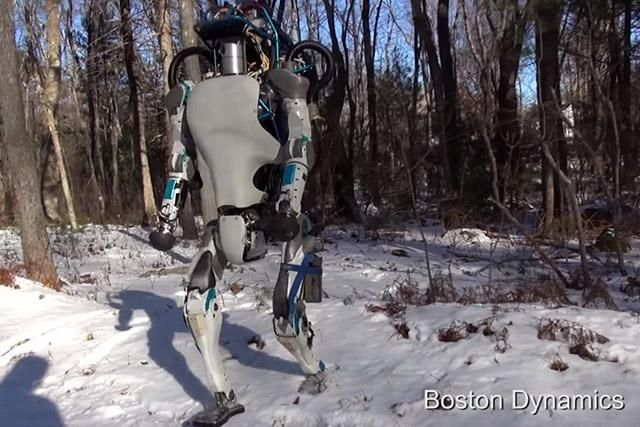 The Atlas robot from Boston Dynamics could move around interiors, open doors, and pick itself up if it falls over
