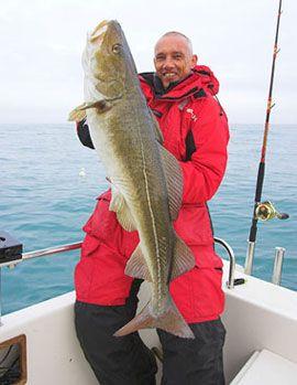 COD fishing in Baltic Sea in Poland