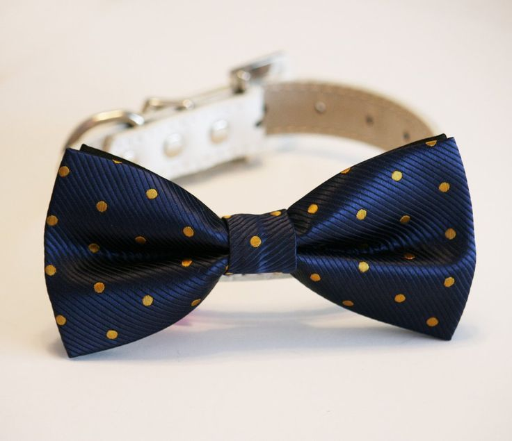 Navy and Gold Dog Bow Tie, Polka dots bow, Pet accessory, Dog wedding accessory, Dog Lovers, Dog birthday gift
