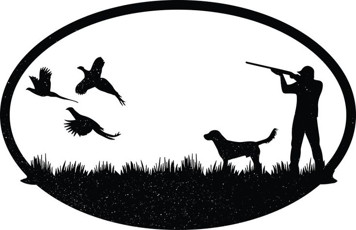Les 25 meilleures idées de la catégorie Pheasant hunting ...