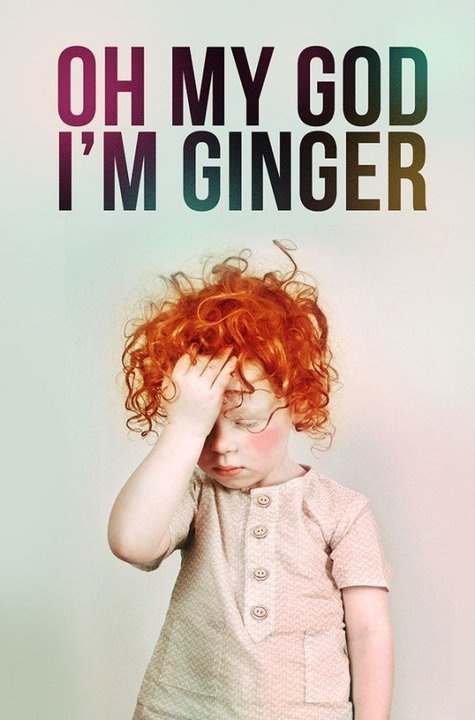 Ginger rocks.: Red Heads, Red Hair, Quote, Funny, Things, Redheads, Kid