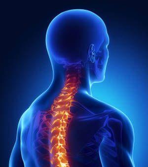 L'arthrose cervicale atteint le cartilage ou le disque situé entre les vertèbres du cou