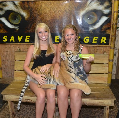 If you love animals, particularly those in the wild then you need to visit T.I.G.E.R.S. Preservation Station. Watch the cubs and the large cats as they interact and play. Have your picture taken with a cub or two and maybe even an ape while helping endangered animals. Opens at 5:00 p.m. every day March through October.