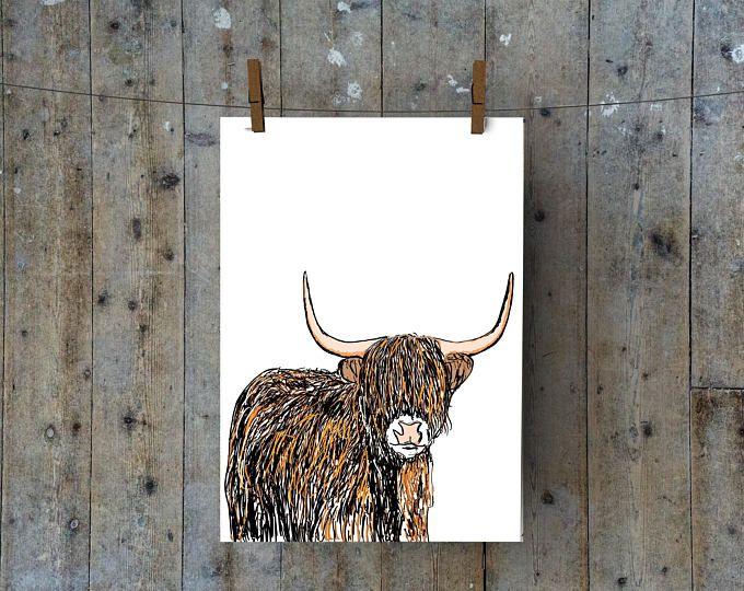Highland Cow A4