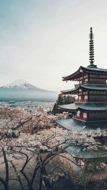 Kyoto Japan In 2020 Schone Orte Japan Reisen Fantasielandschaft