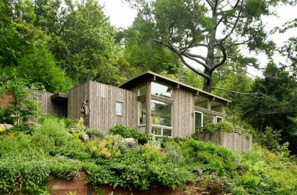 #architecture: Mills Valley, Rooftops Gardens, Artists Studios, Feldman Architecture, Valley Cabins, Green Roof, Yoga Spaces, Roof Gardens, Small Cabins
