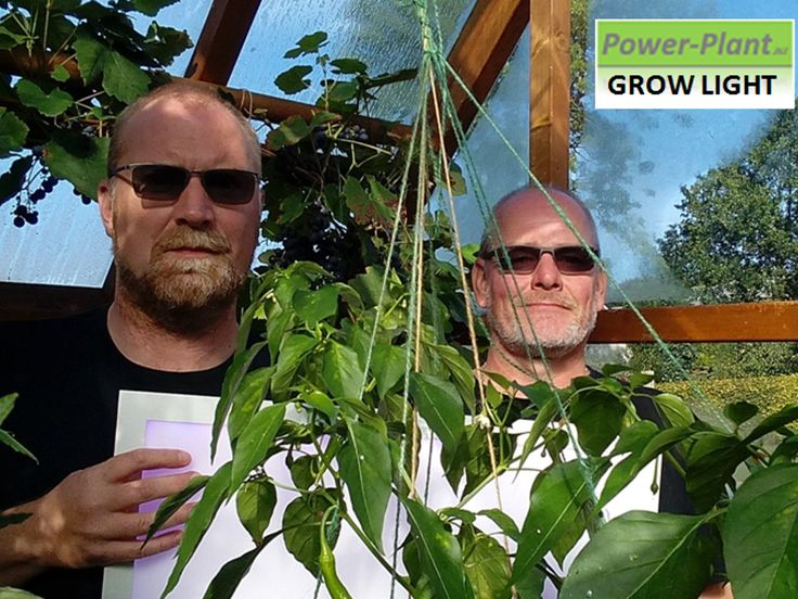 Power-Plant.biz: Grow any plant anywhere in the world. project video thumbnail
