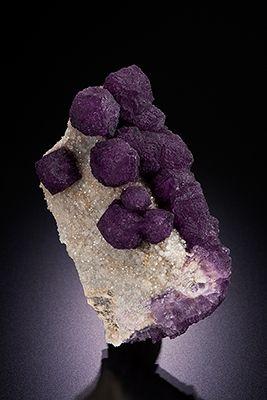 Fluorite on Quartz Buxieres-Les-Mines, Allier, Auvergne, France / Mineral Friends <3