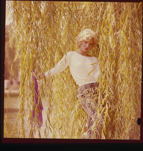 TUESDAY-WELD-GLAMOUR-PHOTO-SHOOT-ORIGINAL-2-25-X-2-25-COLOR-SLIDE-TRANSPARENCY