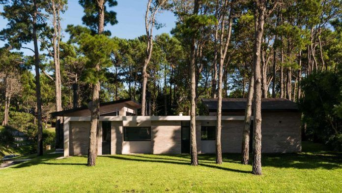 First Eighth contemporary summer home located in a coniferous forest - CAANdesign | Architecture and home design blog