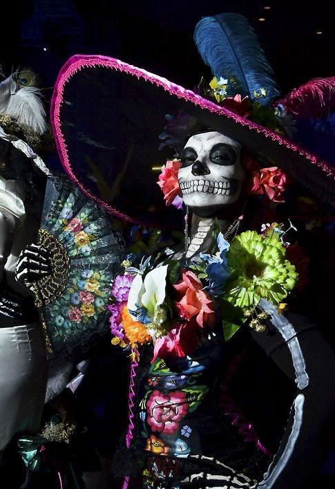 Skull Halloween Costumes