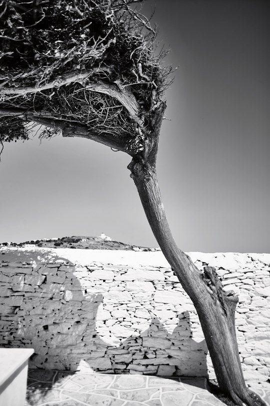 Sifnos, Greece   Greek Islands (Condé Nast Traveller)