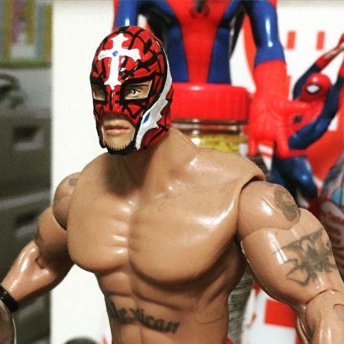 花ばっかりじゃ、らしくないので#スーパースター#レスラー#レイ ミステリオ#Rey Mysterio#WWE#クルーザー級#ルチャ#プロレス#フィギュア#スパイダーマン#619#覆面