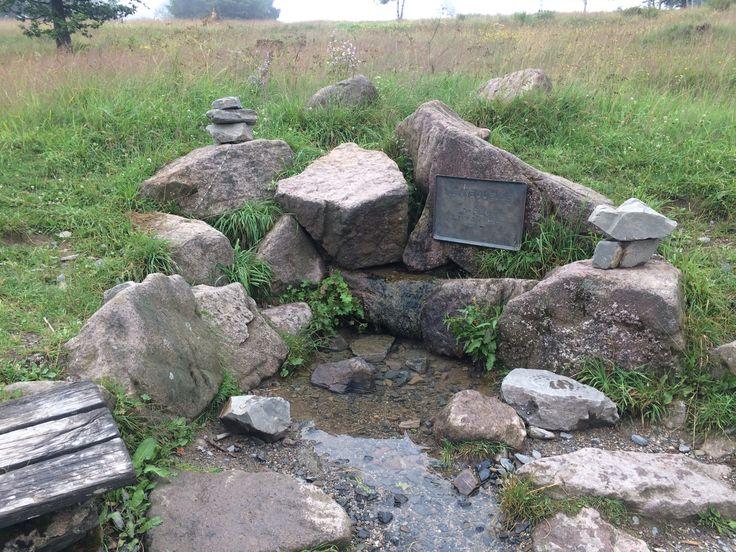 Genieten van de Rothaarsteig en andere wandelpaden - Bron van de Lenne op de Kahler Asten