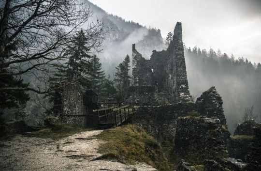 Abandoned Castle Ruins in the Forest | by Aleš Krivec. Think of how it once was …
