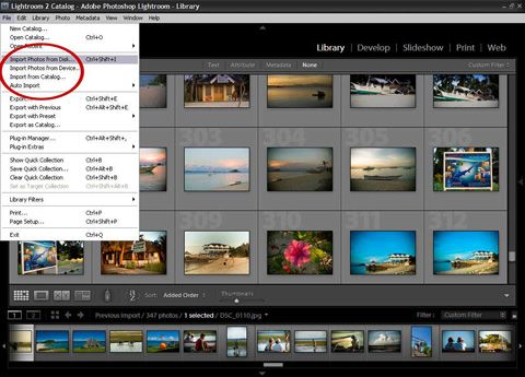 Converting RAW photos & other Lightroom basics