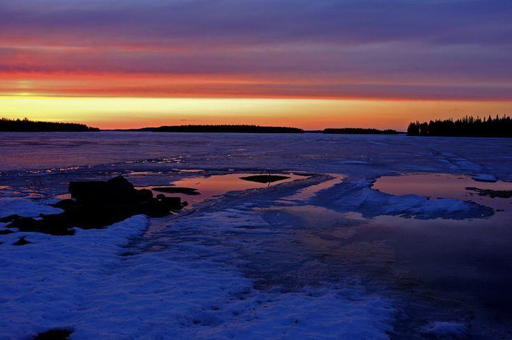 wild Finland - Kuhmo, Eastern Finland