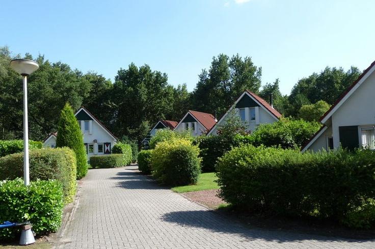 Vakantiehuis huren in Friesland ? Bekijk het aanbod van vakantiehuizen in deze regio eens op:  http://www.recreatiewoning.nl/woning-zoeken/huur/nederland/friesland/-/-/-/1