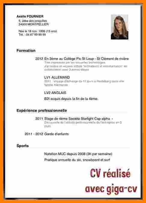 Cv Etudiant Sans Experience Modele De Cv Exemple Et Type Gratuit Cute766