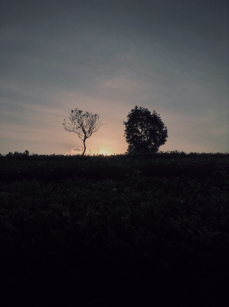 """The beauty of nature,called """"Senja"""""""