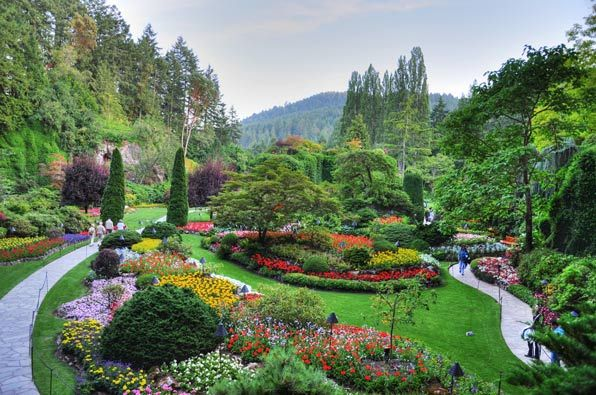The brilliant color of the floral displays at Butchart Gardens on Vancouver Island in British Columbia draw more than a million visitors each year. The gardens were created as part of the Butchart family home over the course of several years beginning in 1909, and the gardens are still family owned.