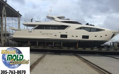 Do you think there is mold lurking on board your beautiful boat, luxurious yacht, private charter vessel , party boat, booze cruiser, cruise ship, or other type of boat, ship, or vessel ?