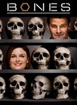 """Bones.  Another detective one.  But I really got into the story lines of the characters more then the """"detective"""" part of the show.  Love it though."""