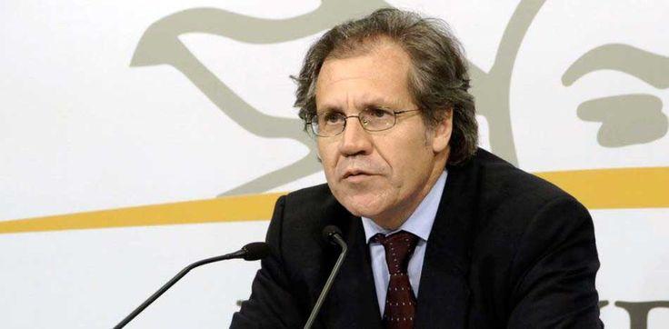 Almagro ofrece su cargo en la OEA a cambio de la libertad en Venezuela
