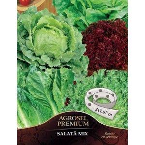 Seminte mix de salata