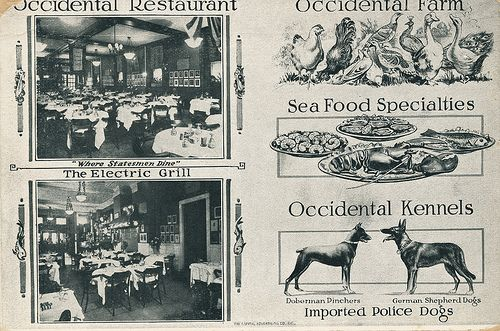 The Occidental Restaurant was opened by Gustav Buchholz (1874–1925), a German immigrant who had been a popular headwaiter at the Willard Hotel. Like all the best restaurant owners, Buchholz knew everyone who was anyone, remembered their likes and dislikes, and always had the right table ready for them.