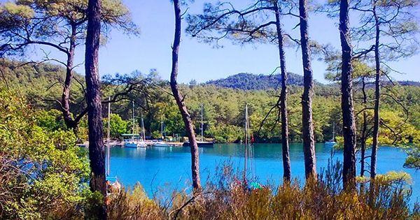 Türkiye'nin En Güzel Koyları içinde Gökova'nın Değirmen Bükü içinde yer alan Okluk koyu, inci koy diye de tarif edilir, yürüyüş alanları ve doğası ile çok güzel bir koy.  #Maximiles #Turkey #Türkiye #deniz #plaj #denizmanzarası #gezilecekyerler #gidilecekyerler #koylar #plajlar #doğa #doğamanzarası #doğamanzaraları