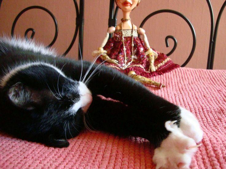 BOUDOIR DOLL & BOUDOIR CAT #cat #tuxedo #boudoir #doll #artdoll #boudoirdoll