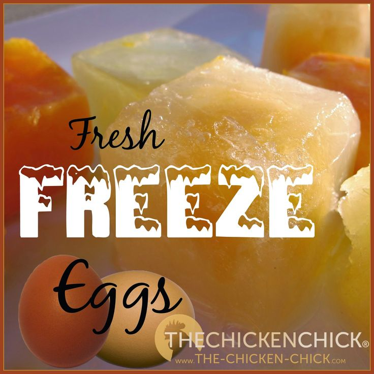 Freezing eggs when the hens are firing on all cylinders ensures a steady supply of eggs in the lean months. If you have chickens in your backyard, there is never an excuse for getting caught buying eggs from the grocery store. So, let's take a look at how to freeze and use fresh eggs!