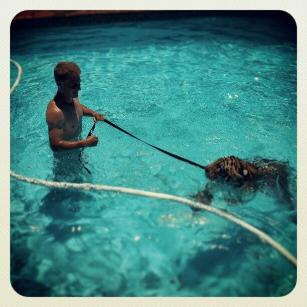 1st Swim