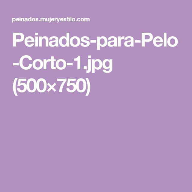 Peinados-para-Pelo-Corto-1.jpg (500×750)
