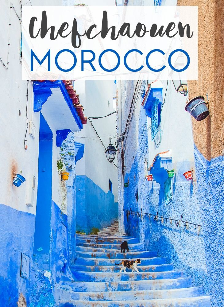 """Is Morocco's blue city, or """"blue pearl,"""" really worth a visit? Here's my answer about travel to Chefchaouen (plus some practical tips about visiting!)"""