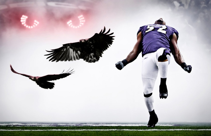 Baltimore Ravens Ray Lewis Quotes: 15 Best Images About Sports Betting Quotes On Pinterest