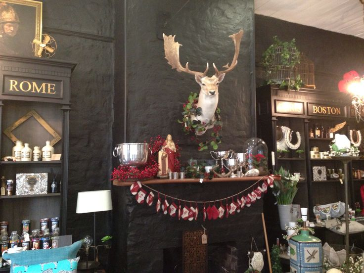 Christmas arrives at La Vita along with a beautiful new reindeer.