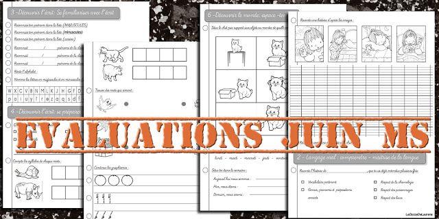 Evaluations de juin Moyenne section