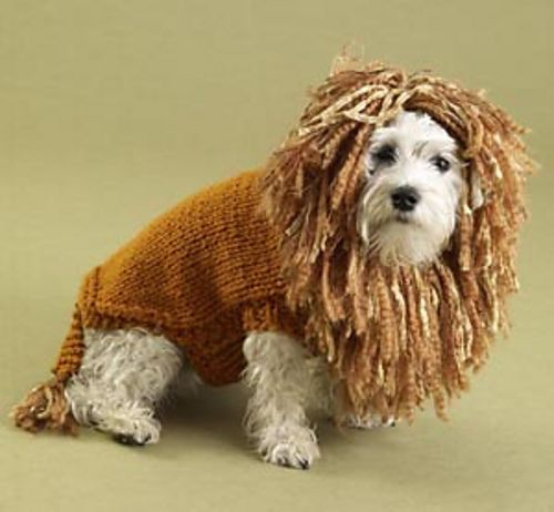 Knitting Patterns For Dog Hoodies : Lion Brand Yarn Free Online Patterns > King of the Beasts (Lion) Dog Sweat...